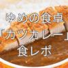 【低たんぱく弁当】キッセイでゆめの食卓のカツカレーが特別価格キャンペーン中