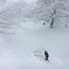 【どこのスキー場で滑るのか...ではなく、誰と滑るのか】