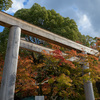 奈良、等彌神社に行ってみました D7500編 その1
