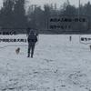 雪の日のドッグパーク