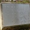 万葉歌碑を訪ねて(その356、357)―東近江市糠塚町 万葉の森船岡山(97、98)―