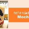 【タピオカを食らう】Mochi の タピオカレビュー