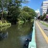 関越ウォーク 街道ルート 11. 高崎〜渋川