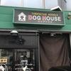 「DOG HOUSE」こちらも病みつきになるくらいの鶏白湯で美味しいです