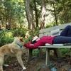 熱波と木陰のベンチ、庭の生き物、それから次女の具合