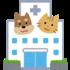 フェレットの生後3回目の予防接種と健康診断