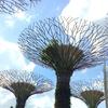 LCCでお得にアジア周遊@台北-ダナン-シンガポール