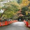 京都 紅葉100シリーズ  神護寺