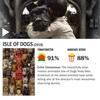 映画「犬ヶ島」感想 - 日米の豪華キャストが花を添えたストップモーション映画(ネタバレあり)
