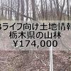 【Bライフ土地情報】栃木県那須郡【管理費無し低コスト別荘地】