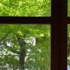 ◆京都 7月のご案内です。