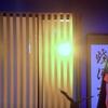 元木聖也さん 謎な追加戦士 高尾ノエルを好演?!『ルパパト』#21