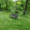 春の「たじま高原植物園」。和知の大カツラ。
