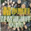 事前予約不要 自由に取りにいける伐採木の配布情報 草津市