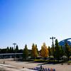 駒沢オリンピック公園へ行ってきた。