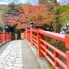 【女ひとり旅】伊豆の小京都〜修善寺〜を散策♪