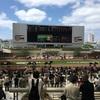 家族で阪神競馬場に行ってきました!