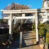 大松氷川神社と大松の富士塚
