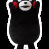 2-5. 到着!総合ランキング第1位 熊本県産ゴールドラッシュ