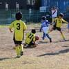 第1回八千代ライオンズクラブ杯少年サッカー大会(2年生)