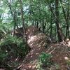 向山連山のハイク(その3)向山三角点~珪石山