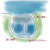 【バス釣り】ポイント開拓の小ワザ