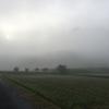 霧海のもんぺとくわ(2017年10月1日その1)
