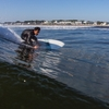SEA LOVE SURFBOARDSのハルフィッシュについて