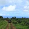 ハワイ島の思い出5 初めてのバギー