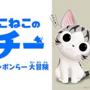 猫好き必見の最新「猫グッズ」特集!!!猫専用マンション&スマホで操作できるラジコン猫じゃらし