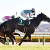 東京新聞杯2021を過去傾向・注目馬・展開から予想