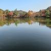 六甲全山縦走路のすぐ近くに修法ヶ原池(しおがはらいけ)