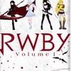 紙芝居っぽいけど、アクションは秀逸:映画評「RWBY volume 1」