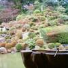 木曜定休日/おこしやす京都。