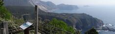 伊豆諸島・神津島でさくっとぐるっと観光スポットめぐり