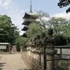 7月3日 上野東照宮から西日暮里まで猫さま歩き とその情景