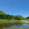薄紫色の杉!?岡山県鏡野町で見た自然が織りなす美しく力強い姿