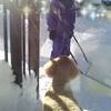 70代シニアのインスタグラム244日~大雪でシニアは除雪が大変!