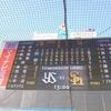 【野球】オープン戦現地参戦!感想!