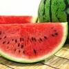 スイカは食べ物です!! (Watermelon is the food! !)