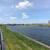 中川を歩く 八潮潮止橋から新中川分岐点