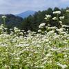 開田高原でアイスを食べてトウモロコシゲット!