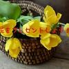 花と花瓶で仲直りは高コスパ!喧嘩したらバラがプレゼントにおすすめな理由を書いてみた