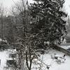 雪の日に思う事