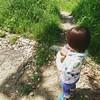 【1歳9ヶ月】『咲くやこの花館』に行ってきた(GW)
