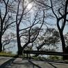 【滋賀】人気のサイクリング びわ湖10分の1周