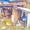 意外と小屋暮らしとかソロキャンプには興味は無い節約系ミニマリスト
