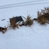 庭の木柵を破壊されました。当て逃げ被害にあった場合の対応と今後の対策。