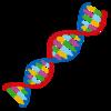 【スポーツ遺伝子】ハプログループを調べてみたらグループFでした
