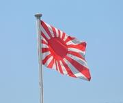 韓国教授がIOCに旭日旗禁止求める動画 日本政府に抗議求める声が